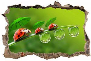 Art déco Stickers - Stickers 3D Trompe l'oeil Coccinelles réf 23768 - 30x20cm de la marque Art déco Stickers image 0 produit