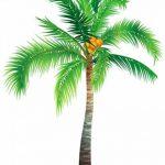 azutura Palmier Arbres tropicaux Sticker Muraux Disponible en 8 Tailles Gigantesque Numérique de la marque azutura image 1 produit