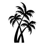 azutura Palmiers Sticker Muraux Arbres tropicaux Autocollant Mural Salle de bain chambre Décoration de maison disponible en 5 dimensions et 25 couleurs Très Petit Noir de la marque azutura image 1 produit