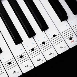 Faburo 2pcs Autocollants amovibles pour notes de piano Stickers transparents pour Clavier de piano 54,61,88 touches et 2pcs Chiffons à piano de la marque Faburo image 0 produit