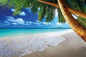 GREAT ART Affiche de décoration Murale des plages de rêve de Palm Beach des Caraïbes Un Paradis d'île Naturelle de Palmiers tropicaux et de Ciel Bleu | Mur Deco Poster Mural Image by (140 x 100 cm) de la marque GREAT-ART image 0 produit