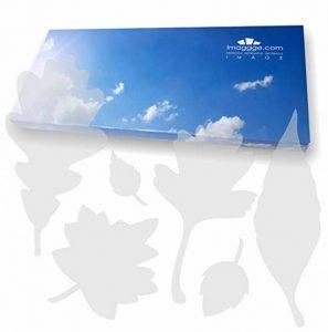 imaggge.com Autocollants Anti-Collision pour Portes vitrées (39 Feuilles d'arbres) - Evitent Les Chocs d'oiseaux ou heurts de Personnes sur Les vitres - Couleur Sablé dépoli translucide de la marque imaggge-com image 0 produit