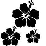 Sticker autocollant 3 fleurs d'hibiscus pour votre auto, votre frigo, vos murs… . couleur blanc de la marque Toptshirt image 4 produit
