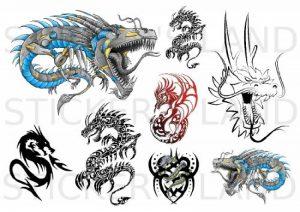 sticker dragon TOP 4 image 0 produit