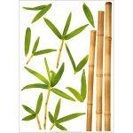 Stickers Décoration Murale Bambou aurea Nouvelles Images de la marque NOUVELLES-IMAGES image 3 produit