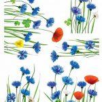Stickers Fenêtres Champ de bleuets (COPPIETERS VAN CAUWENBERGHE ) Nouvelles Images de la marque NOUVELLES-IMAGES image 3 produit