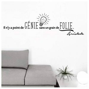 stickers folies TOP 10 image 0 produit