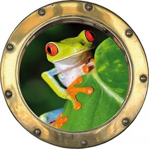 stickers grenouille TOP 6 image 0 produit
