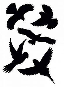 stickers oiseaux TOP 12 image 0 produit