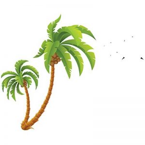 stickers palmier TOP 9 image 0 produit