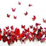 stickers papillon TOP 9 image 4 produit