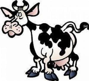 stickers vache TOP 2 image 0 produit