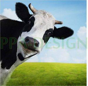 stickers vache TOP 6 image 0 produit