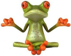 Stickersnews - Sticker animal grenouille zen 29x22cm de la marque N/D image 0 produit