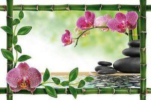 Stickersnews - Sticker mural trompe l oeil déco bambou Galets Orchidées réf 946 Dimensions - 39x26cm de la marque N/D image 0 produit