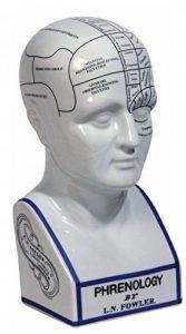 Tête phrénologique en porcelaine de la marque Authentic-Models image 0 produit