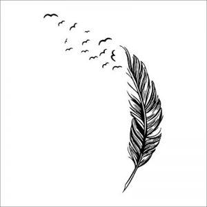 Vovotrade New Feather Chambre Autocollant Mural Oiseaux Accueil Decal Mural Art Decor Noir de la marque Vovotrade® image 0 produit